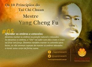 05 - Princípio do Tai Chi Chuan
