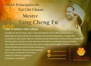 06 - Princípio do Tai Chi Chuan